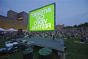 Thousands of fans watch a selection of cat videos at the Internet Cat Video Festival in Minneapolis last summer. <br/> <small> Photo courtesy of the Walker Art Center. </small>