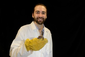 Master's student Lucas Greville holding a big brown bat.  Photo by Brock Fenton